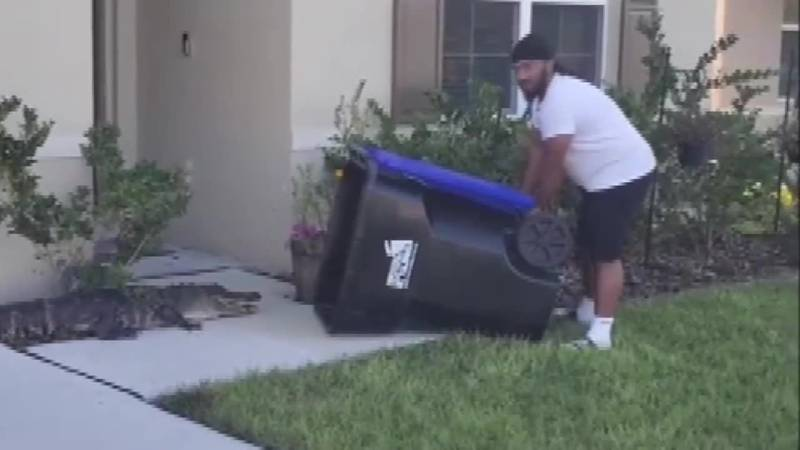 Florida man captures gator with trash can