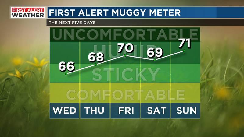 Muggy Meter.