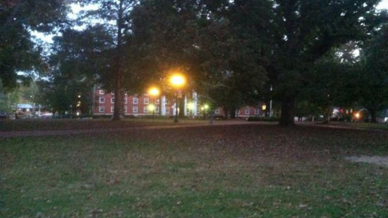 University of Montevallo Police Chief Hadder says two of the cats were found on this quad....