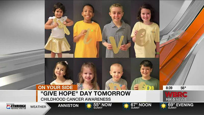Amanda Knerr, Executive Director of Hope for Autumn Foundation, talks about why people will...