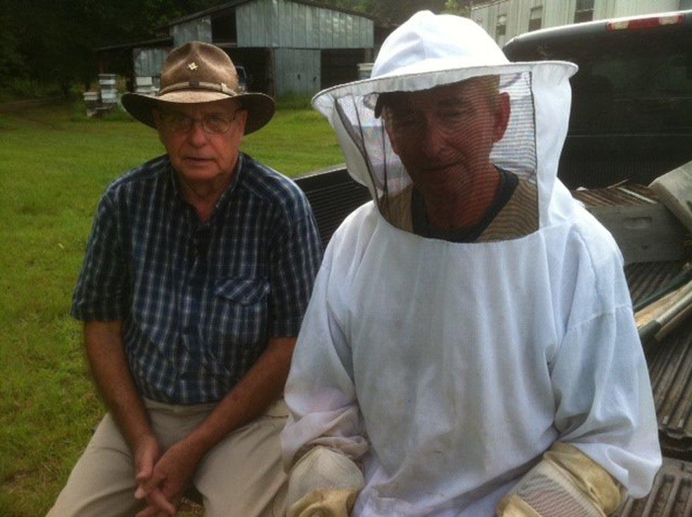 Hewett's Honey Farm
