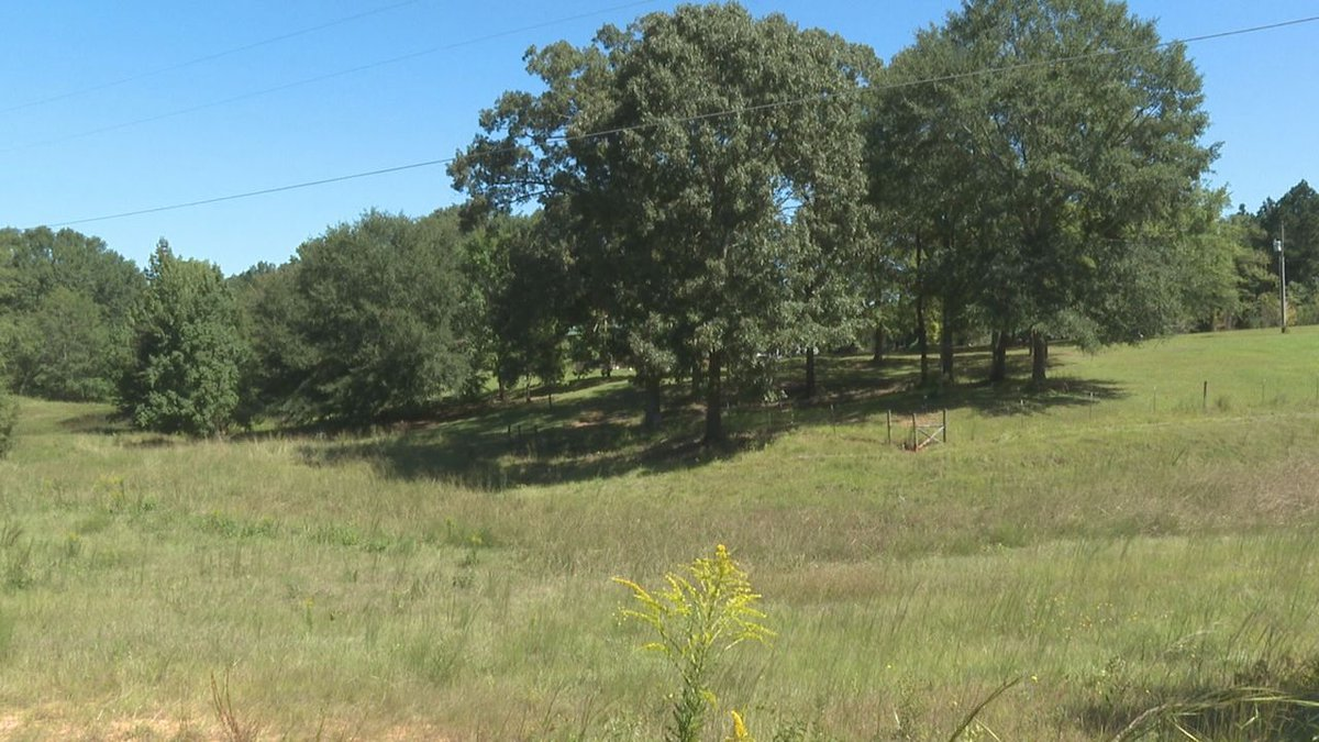 Area where missing 5-year-old was located.