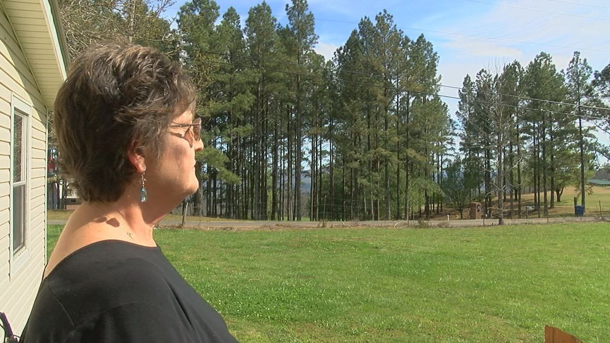 Woman said she saw ball of fire in the sky Wednesday (Source: WBRC)