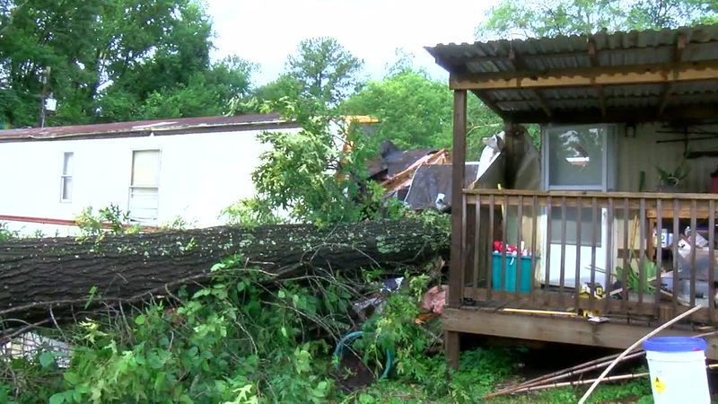 Tuscaloosa VCU confirmed 24-year-old male and a 3-year-old male were killed in storm