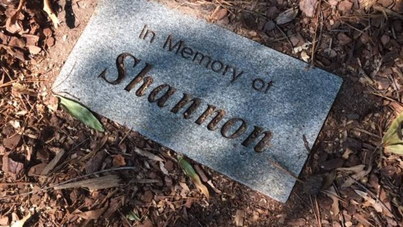 A maker under a tree planted in memory of Shannon Paulk
