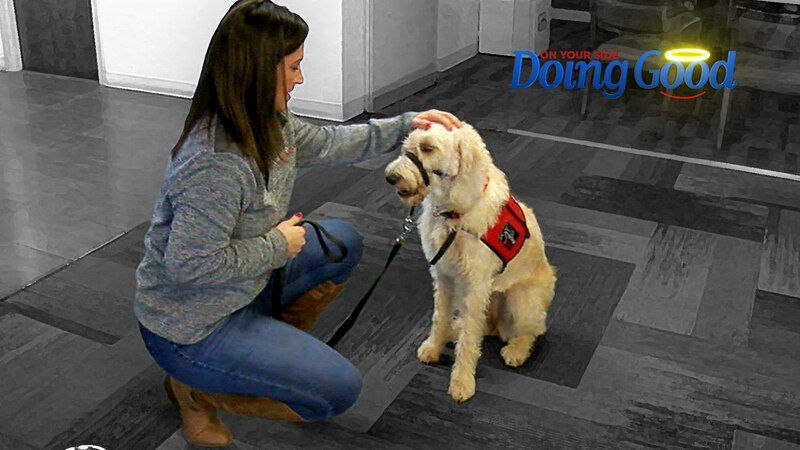 With two decades of experience and nine years with Service Dogs of Alabama, Ashley knows her...