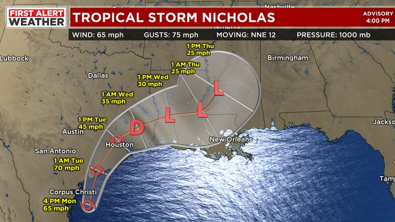 Tropical Storm Nicholas.