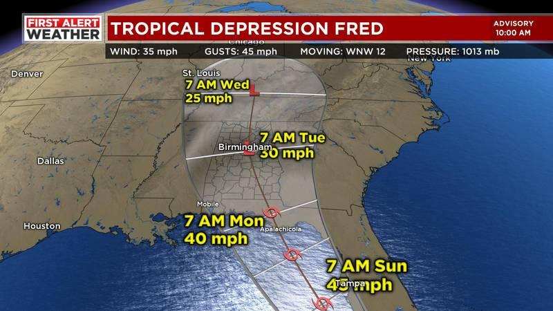 Tropical Depression Fred.