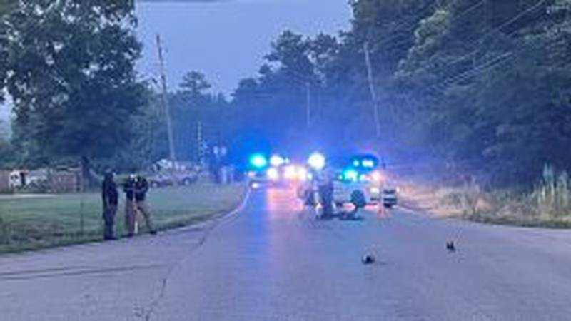 Man struck and killed