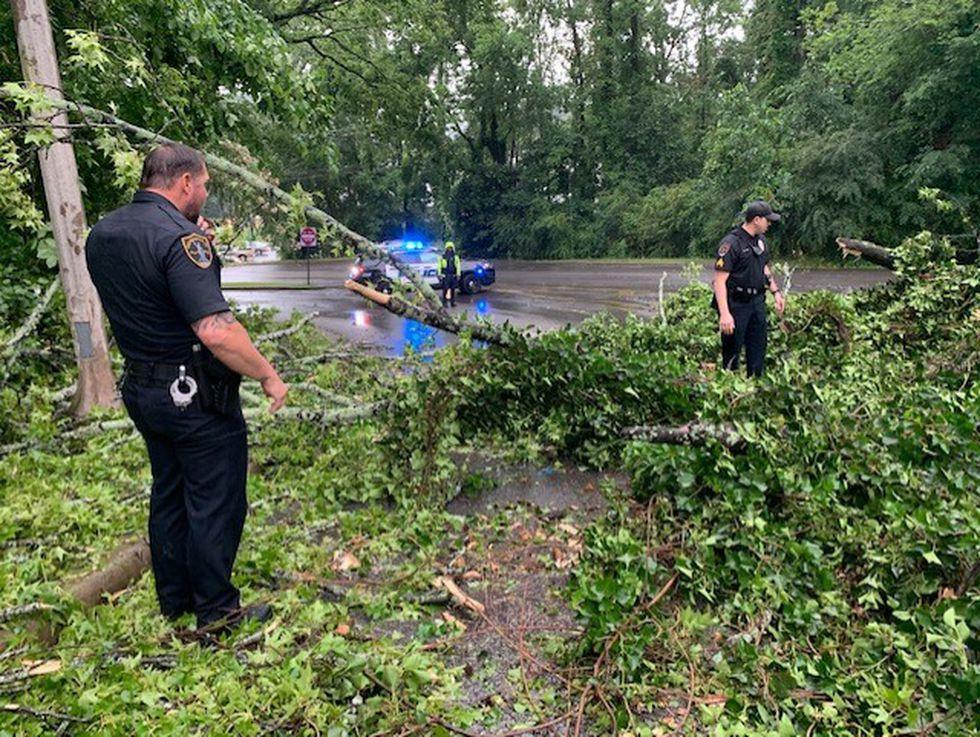 Birmingham officers work to move huge tree