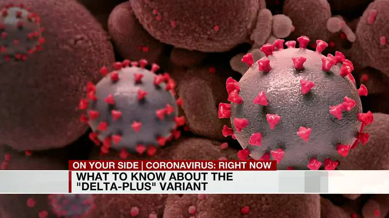 What to know about the 'delta-plus' variant