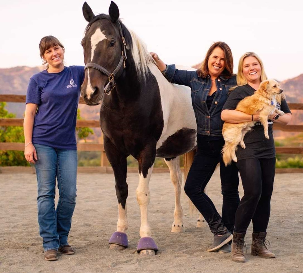 The Red Barn in Leeds is a lot more than just a horse farm. The work that happens there...