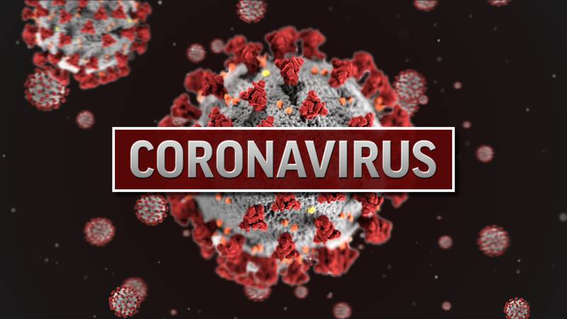 COVID-19 is commonly known as coronavirus